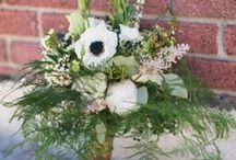 """Wedding Greenery Plumosa (Aspargus) Fern / Beautiful wedding bouquets, corsages, boutonnieres and centerpieces that feature plumosa (aka """"aspargus fern"""")."""