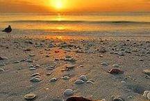 Good morning / Sunrise
