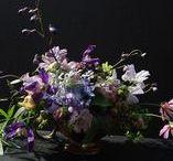 purple blue palette/ FLORA botanical atelier
