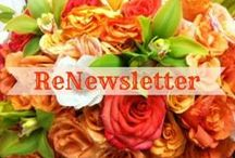 Renew Your Space Blog / Awesome Organizing Blog!! More ideas can be found at http://www.renewyourspace.org