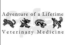 Veterinary Technician Interests / by SonoPath .com