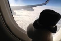 Moomins in Frankfurt