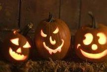 Halloween / by Sara Bottrell