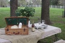 picnics tailgating and parties / by Lisa Colern