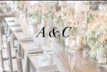 A + C / by Anne Book