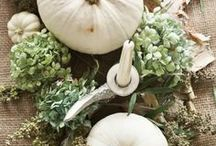 Holiday Ideas: Fall / Halloween, Dia De Los Mueros, Thanksgiving, and just fall-themed decorating in general.