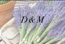 D + M / by Anne Book