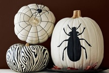 Holidays | Halloween - Pumpkins / by Ashley White