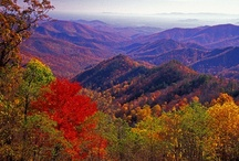 Places around Maryland and Virginia area / by Joan Duffy