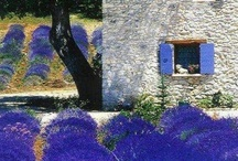 A Garden of earthly delights / Garden stuff / by Debra Hudgens