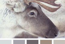 Colours - White & Neutrals
