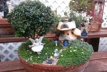 Fairy Gardens / by Katie Sweeney