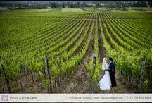 Country Chic Vineyard Wedding in Maremma / Maremma's Wedding