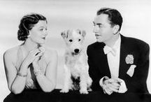 Asta - One Special Dog / The Thin Man movies were my mom's favorite and also mine after she introduced me to them.  This series has influenced my writing.