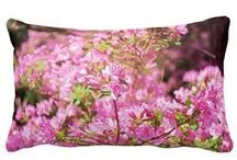 Pillows - at Zazzle / Some designs of mine and a lot from others.