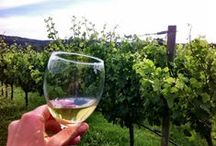 Wine Vacations / For travelers who love wine, immerse yourself in a vineyard or two.