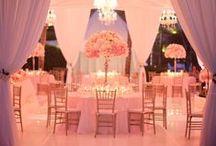 Dream Wedding / by Megan Ring