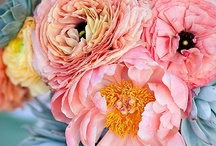 Fantastic Florals / by Amber Corbi