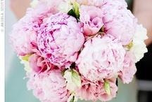 Flowers / by Brittany Cummins
