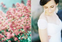 winter wedding / winter wedding inspiration shoot, cozy, lavender, lambs ear, pastels