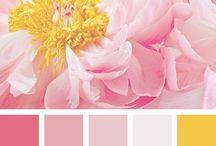 DIY | Color Palettes / Color palettes I like