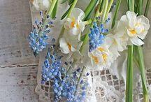 Vibeke Design | Spring / Home decor by a Norwegian blogger Vibeke. Amazing photos!