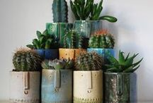 Pottery  / by Donna Charles