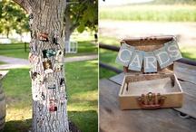 Wedding / by Rachel Miller