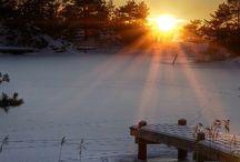 Winter / by Leonie
