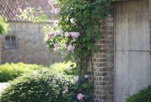 exterior / exterior details of home  / by Lara Dennehy Horsting