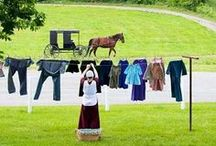 Plain People~Amish / I admire their simple way of life!  / by Diana Nieto