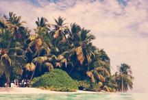 Costa Rica! / by Michelle Reagan