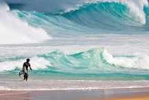 Beaches and Waves / by Friedel Jonker