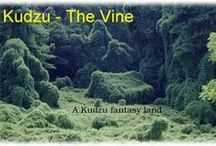 k u d z u / Ever driven down a highway n the south & seen what you think looks some animal shape made by kudzu growing over trees? The shape might look to you as a prairie dog & to others something else. Kud-Zoo web page is dedicated to all of the animals & other shapes that can be seen n fields of kudzu. Because different people may see different animals n the kudzu photographs, artist Bill Lawson of Dahlonega has touched-up the images a little so there is no question about the shape n this Kud-Zoo! / by Shirley Aston-Andre Golden