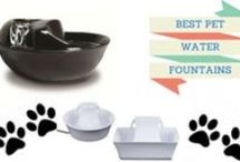 Best Pet Water Fountains / Finding the best pet water fountain for you, depending on your budget and the number of pets you have I have the solution for you in finding the best pet water fountain for your household.
