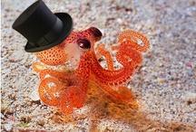 Everything Octopi!! / by Thi Quach