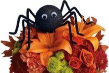 Halloween / by Tasha Escallier