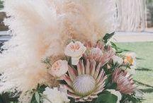 Pink and Modern wedding