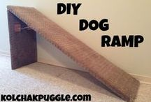 DIY for Pets  / by SPCA of Texas