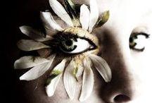 Papilion - Bohemian Soul / by Papilion
