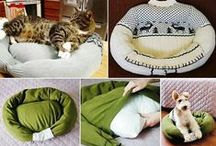 For Pets / by Carmen