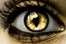 Color - Gold / #gold #color / by Sheri Nye