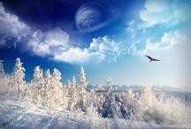 Winter Wonderland  / by Debbie Klinzing