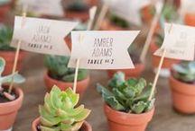 wedding + event / by Linda Jean