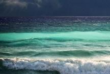 | Beach life |