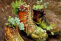Flora and Garden Beauty / Inspiration for gardens and writing...