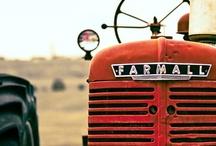 On the Farm / by Becky J Stephens (Vintage 541)