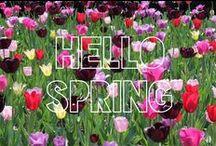 I Love Spring / by Monica Kim