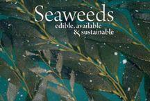 seaweed scrumptiousness