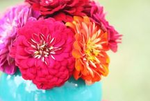Celebrate ~ Mexican Flower Party / by Elsa Vermooten